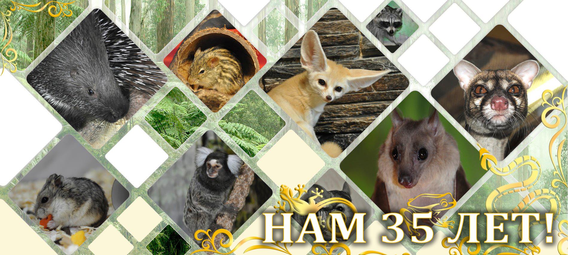 Фото с сайта зооэкзотариума